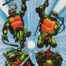 Teenage Mutant Ninja Turtles Poster 22x32