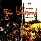 New Miserable Experience by Gin Blossoms CD 1992