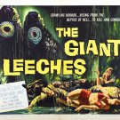 Attack of the Giant Leeches (1959) 1950-1960 Classic Horror B Movies - DVD - BUY 2 DVD's GET 1 FREE