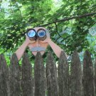 "Handmade Custom Wooden Functional  "" Peeping Pete""  Rail or Fence Sitter"