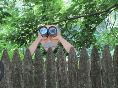 "Handmade Custom Wooden Functional  "" Peeping Pete""  Rail or Fence Sitter"