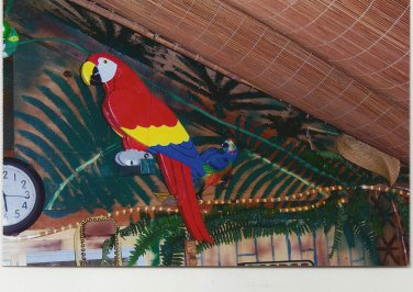 Handmade custom painted life size multi-layered Parrot