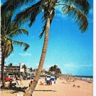 Florida Postcard Typical Florida Beach Scene Surfing Swimming Sunbathing