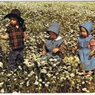 Ontario Laminated Postcard RPPC Mennonite Children in Daisy Field