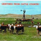 Nebraska Postcard Greetings From Cattle Country Windmill