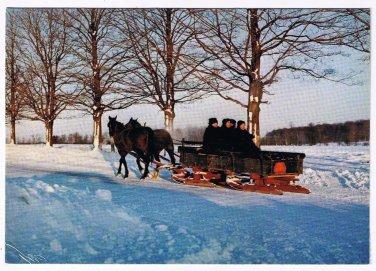Ontario Laminated Postcard RPPC Mennonite Family On Sled Winter Kitchener