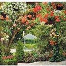 Victoria British Columbia Postcard Butchart Gardens Hanging Baskets