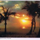 Florida Postcard Beautiful Tropical Sunrise