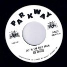 The Dovells Out In The Cold Again 45 rpm Bristol Stomp Parkway NM