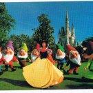 Disney World Postcard Snow White Seven Dwarfs