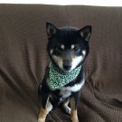 Dog KARAKUSA Bandana Collar GREEN SS size