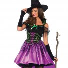 Leg Avenue 2 PC Spiderweb Witch Costume Size Large