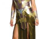 Sku 820457 Deluxe Queen Hippolyta Women Costume Size Medium