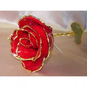 REAL RED ROSE stem - Lacquered & 24k gold-plated