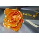 Lacquered & 24k gold-plated REAL Apricot ROSE