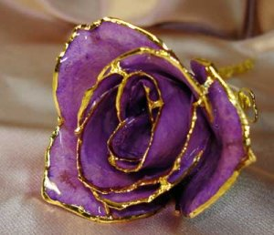 Lacquered & 24k gold-plated REAL PURPLE ROSE