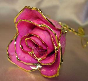 Lacquered & 24k gold-plated REAL PINK ROSE