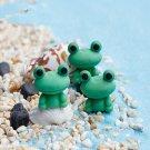 DIY Miniature Frog Dollhouse Ornaments Potted Plant Garden Decor