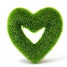 DIY Artificial Moss Ball Star Heart Potted Plant Ornament Garden Decor