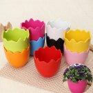 Mini Fashion Plastic Eggshell Indoor Planting Flowers Pots