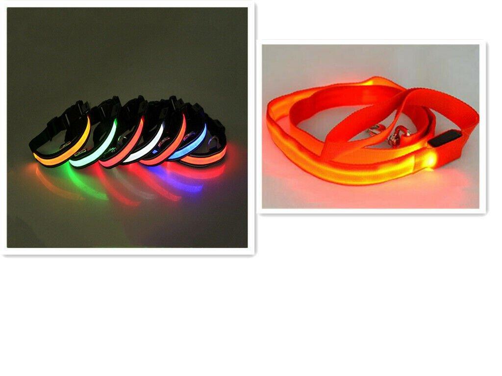 LED Collar and Leash