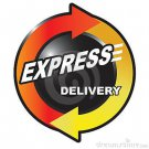 Express Delivery Option 1