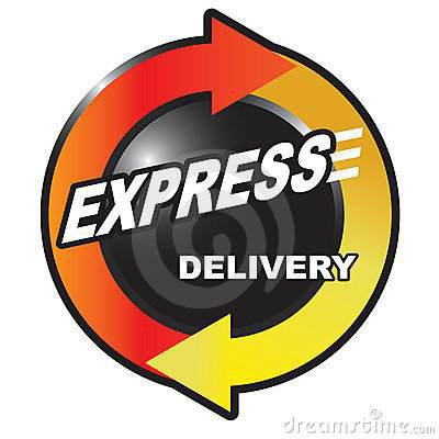 Express Delivery Option 2