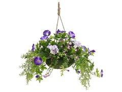 Victoria Garden Hanging Basket Purple Mixed