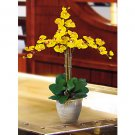 Triple Stem Phalaenopsis Silk Orchid Flower Arrangement -  Gold