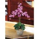 Triple Stem Phalaenopsis Silk Orchid Flower Arrangement -  Mauve