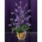 Dancing Lady Silk Orchid Arrangement (Purple)