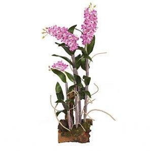 Dendrobium w/Root Base Silk Orchid Arrangement