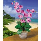 Double Stem Phalaenopsis Silk Flower Arrangement (Mauve)