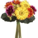 "10"" Gerbera Daisy Bouquet Mixed"
