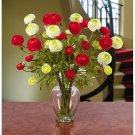 Ranunculus Liquid Illusion - Red/White