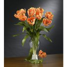 Parrot Tulips Stems (12 Stems) - Orange