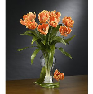 Parrot Tulips Stems (12 Stems) - Orange