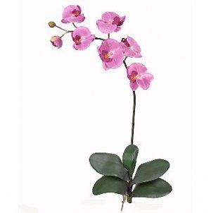 Phalaenopsis Orchid Silk Flowers (6 Stems) - Mauve