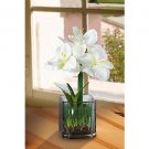 Amaryllis Silk Flower Arrangement w/Glass Vase (White)