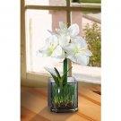 Amaryllis Silk Flower Arrangement w/Glass Vase (White)