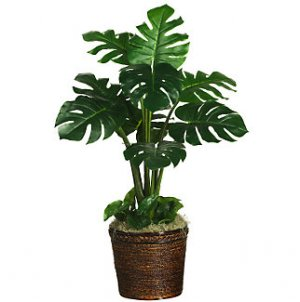 Monstera Silk Plant (Real Touch)