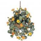Nasturtium Hanging Basket Silk Plant