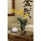 Vanda w/Root Base Silk Orchid Arrangement - Yellow