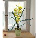 Cymbidium Silk Orchid Flower Arrangement - Green
