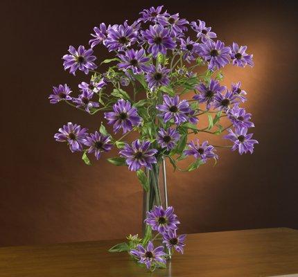 "28.5"" Cosmo Stem (Set of 12) - Purple"