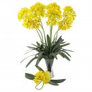 """29"""" African Lily Stem (Set of 12) - Yellow"""