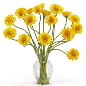 Gerber Daisy Liquid Illusion - Yellow