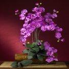 Phalaenopsis Silk Orchid Flower