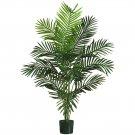 5' Paradise Palm Silk Tree