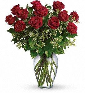 Always on My Mind - Long Stemmed Red Roses (1 dozen)
